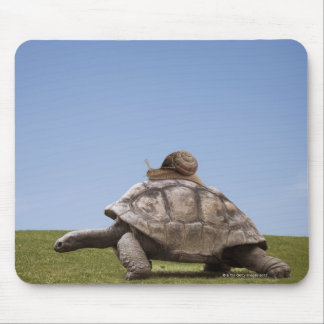 Snail over a turtle mouse mat