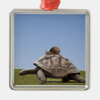 Snail over a turtle Silver-Colored square decoration