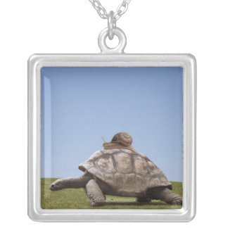 Snail over a turtle silver plated necklace