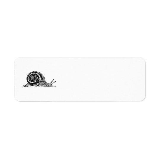 Snail Return Address Label