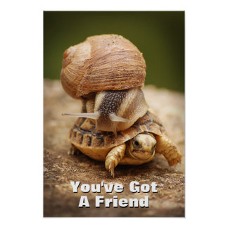 Snail Riding Baby Tortoise Poster