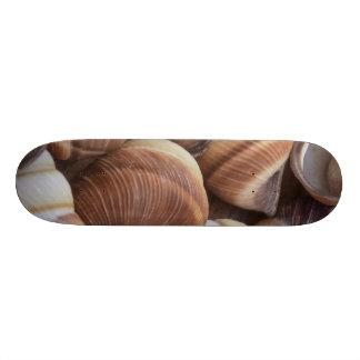 Snail Skate Board Deck