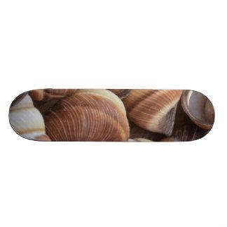 Snail Custom Skate Board