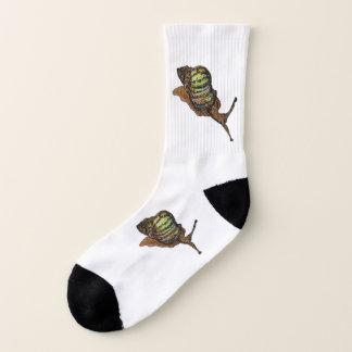 snail socks 1