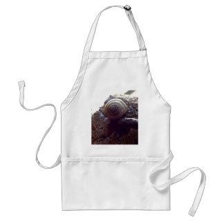 snail standard apron