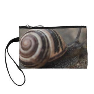 Snail Up Close Change Purses