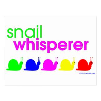 Snail Whisperer Postcard