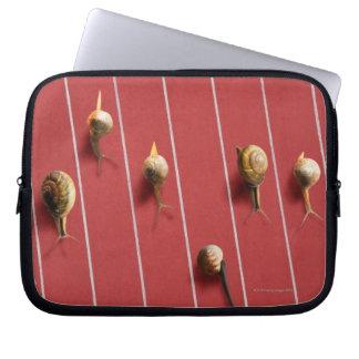Snails running on the truck laptop sleeve