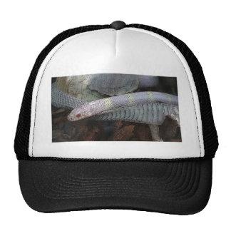 Snake and skin cap