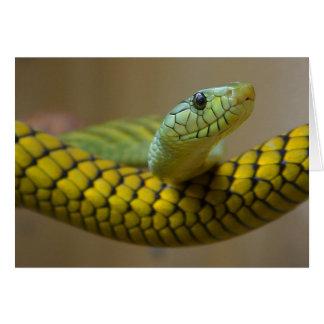 Snake Card