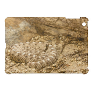 Snake Curled up Case For The iPad Mini