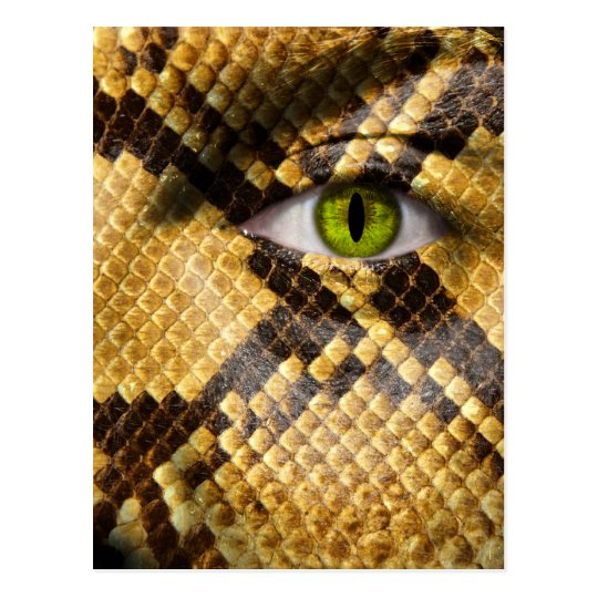 Snake Eyes Postcard