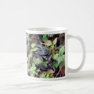 Snake Family Coffee Mugs