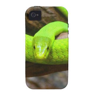 Snake Green Mamba Animal Scary Party Destiny iPhone 4/4S Case