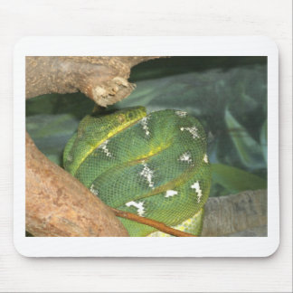 Snake in a box mouse pad