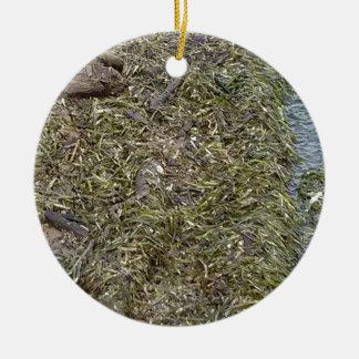 Snake in the River grass Christmas Ornament