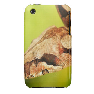 Snake iPhone 3 cover