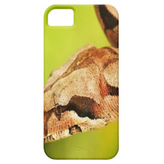 Snake iPhone 5 cover