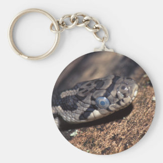 snake keychains