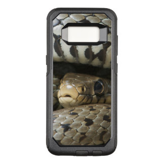 Snake OtterBox Commuter Samsung Galaxy S8 Case