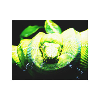 Snake Painting Canvas Print