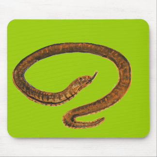 Snake painting mouse pad