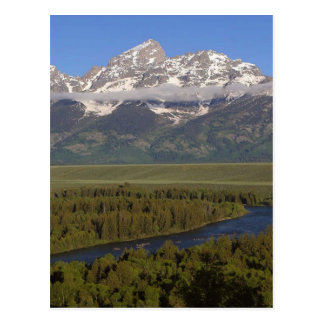 Snake River Grand Tetons Postcard