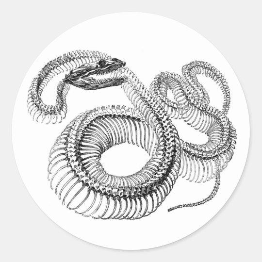 Snake Skeleton Stickers
