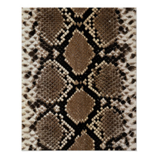 Snake Skin Posters