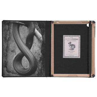 Snake Springs Eternal Cases For iPad