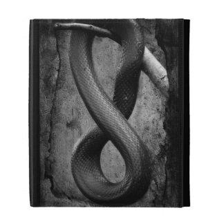 Snake Springs Eternal iPad Case