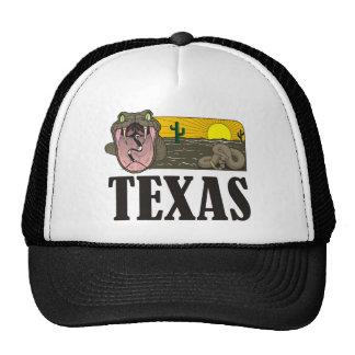 Snake State of Texas USA Rattlesnake and desert Trucker Hat