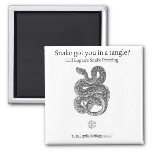 Snake Tangle Magnet Magnets
