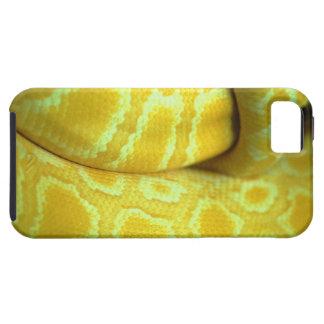 snake tough iPhone 5 case