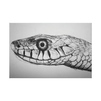 Snakes Head Canvas Print