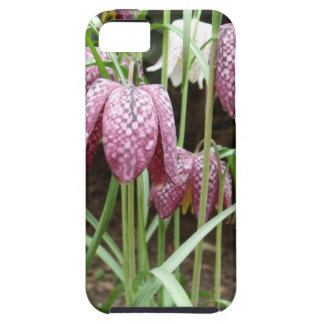 Snakes Head Fritillary Plant iPhone 5 Cases