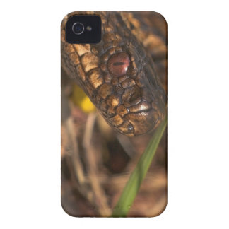 Snakes Head iPhone 4/4S Case ID