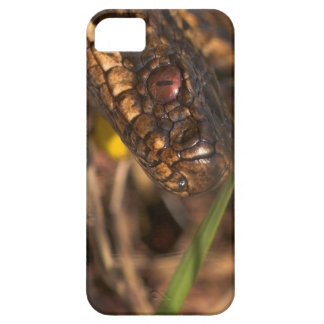 Snakes Head iPhone 5 Case ID