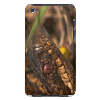 Snakes Head iPod Touch Barely There iPod Cases