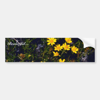 Snakeweed Bumper Sticker