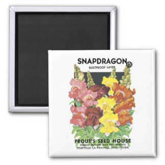 Snapdragon, Rustproof Mix, Prout's Seed House Square Magnet