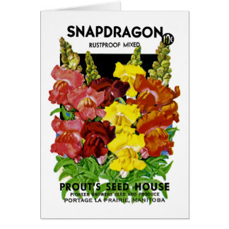 Snapdragon Vintage Seed Packet Card