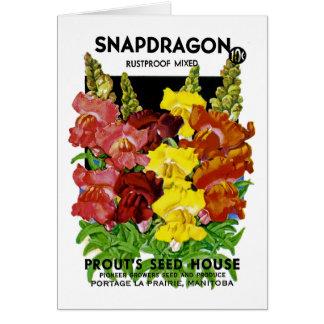 Snapdragon Vintage Seed Packet Greeting Card