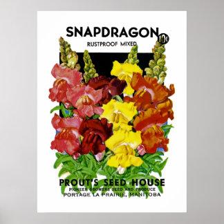 Snapdragon Vintage Seed Packet Poster