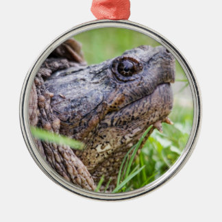 Snapping Turtle Silver-Colored Round Decoration
