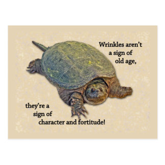 Snapping Turtle Wrinkled Old Age Wisdom Postcard