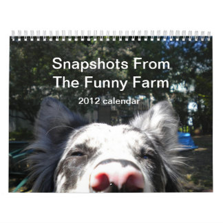 Snapshots From The Funny Farm 2012 calendar