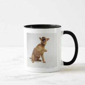 Snarling Dog Mug