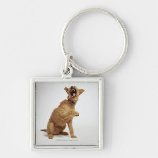 Snarling Dog Silver-Colored Square Key Ring
