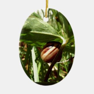 sneaky snail ceramic oval decoration